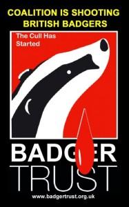 badger trust cull logo